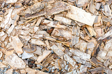 scraper spokeshave sapele exotic hardwood