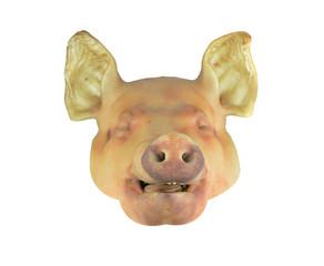 pig's head