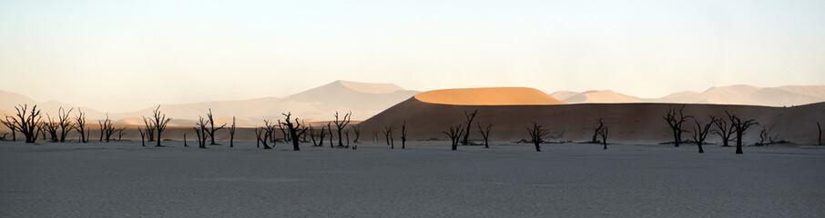 Dead Vlei - Panorama