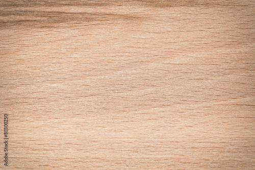 Tuinposter Hout Texture. Wooden texture - wood grain