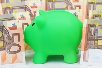 Piggy bank and Euro banknotes