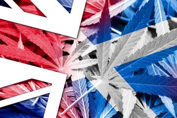 Scotland and United Kingdom Flag on cannabis background