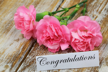 Congratulations card with three pink carnations on rustic wood