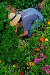 Gärtnerin