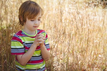 Praying little boy in the park