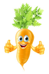 Carrot mascot cartoon