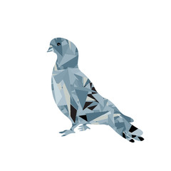 Dove low poly icon