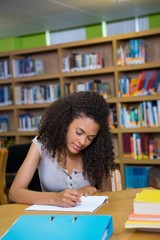 Student writing notes in notepad in the library