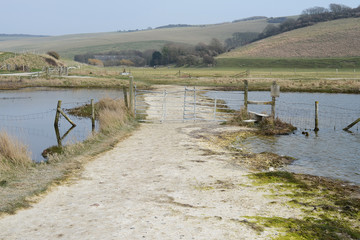 Sussex Chalk Landscape