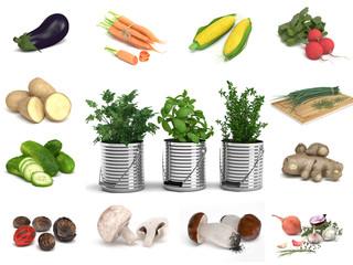 Kräuter Gemüse Sammlung