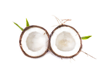 the two halves of the divided fresh coconut