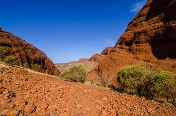 Australian Desert (outback)