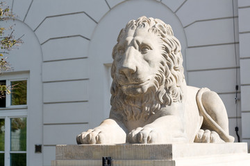 Sculpture of a lion near the Royal Palace in Warsaw, Poland.