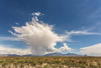 Storm Build Up in Arizona Desert
