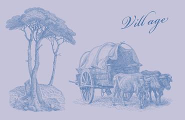 Village illustration