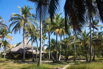 White beach on the island of Baru.