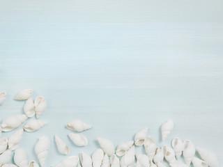 Türkis blauer sommerlicher Hintergrund mit Muscheln