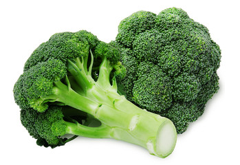 Fresh two green broccoli isolated on a white background