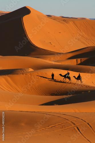 Papiers peints Maroc balade en dromadaire dans le désert de Merzouga