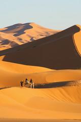 balade en dromadaire dans le désert de Merzouga