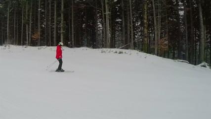 Snowfall and Girl Skier