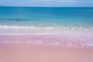 pink shore on a clear day