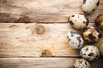 Quail eggs. Easter greeting card.