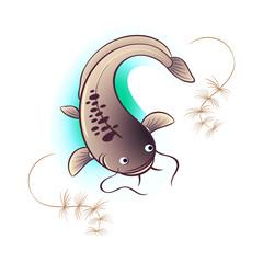 Catfish and algae