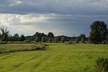 Landschaft  bei Rogeez, Mecklenburg-Vorpommern