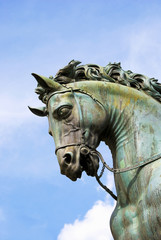 Horse head (detail of the statue of Cosimo de ' Medici in Floren