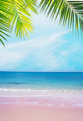 pink shore under palm branches on a clear day