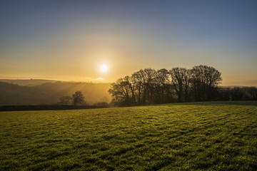 Sunrise in cornish fields with silhouetted trees