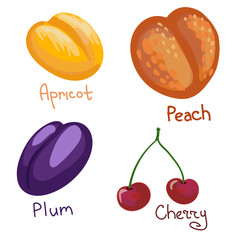 set of four colorful drupes