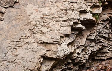 The layered rocks