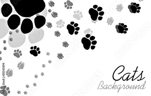 Cats paw background with sample text - 80343894