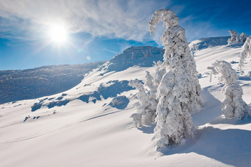 Sunny winter landscape of mountains
