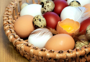 Various color eggs