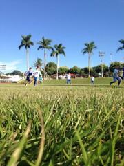 Paixão Pelo Futebol