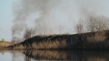 Burning Dry Reeds by the River on a Sunny Spring Day, 1920x1080