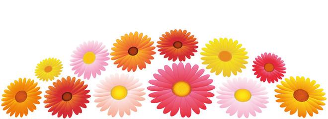Asters Orange Pink Yellow Flowers Arrangement