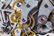 Watch movement macro of parts - 80350225