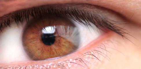 Macro image of a man's eye