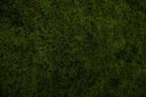 nature moss