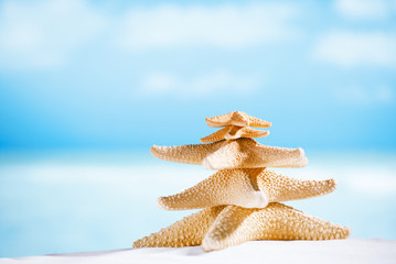 white starfish with ocean, beach, sky and seascape, shallow dof
