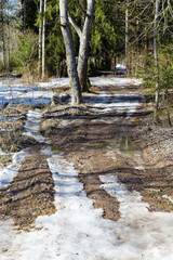 Melting snow in early spring