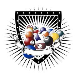 international pool shield