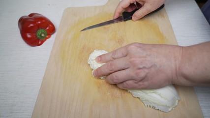 Female hand cutting onion