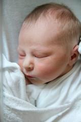 Precious Newborn Baby Girl Sleeping in Hospital Swaddle
