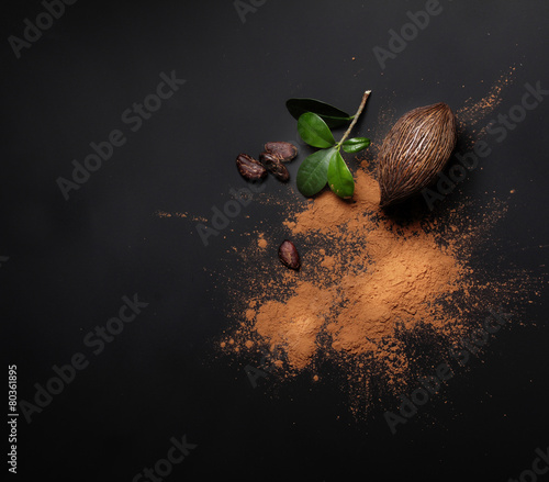 Cacao beans and powder isolated - 80361895