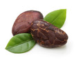 Cacao beans  isolated - 80362056